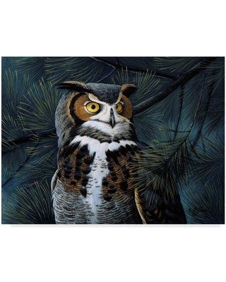 """Trademark Art 'Portrait In The Pines' Graphic Art Print on Wrapped Canvas ALI33775-CGG Size: 18"""" H x 24"""" W x 2"""" D"""