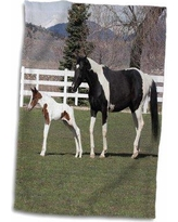Sales On Matranga Clydesdale Mare And Foal Horses Hand Towel Symple Stuff