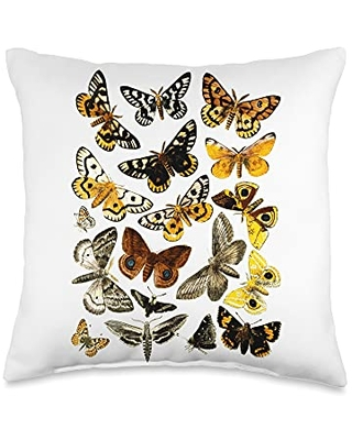 Entomology butterfly Butterflies Vintage Print Butterfly Collection Entomology Throw Pillow, 16x16, Multicolor