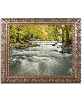 "Trademark Art Hoopes Falls in the Autumn Framed Photographic Print MFG0026-G1114F / MFG0026-G1620F Size: 16"" H x 20"" W x 0.5"" D"