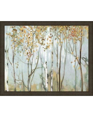Canora Grey 'Birch in The Fog !!' Framed Graphic Art Print on Wrapped Canvas BF019941