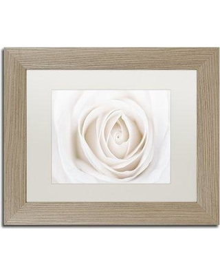 """House of Hampton 'White Rose' Framed Photographic Print HOHP9850 Size: 16"""" H x 20"""" W x 0.5"""" D Frame Color: Birch"""