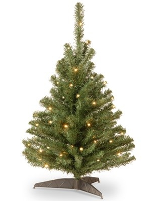 Kincaid 3' Green Spruce Artificial Christmas Tree with 100 Clear/White Lights Ebern Designs