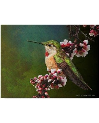 """Millwood Pines 'Hummer with Blossoms' Acrylic Painting Print on Wrapped Canvas MIPN1527 Size: 35"""" H x 47"""" W x 2"""" D"""