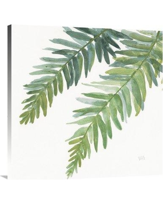 """East Urban Home 'Ferns Square I' Print on Canvas FTVN7478 Size: 36"""" H x 36"""" W"""