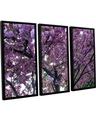 ArtWall Spring Flowers by Dan Wilson 3 Piece Framed Photographic Print on Canvas Set 0wil023c3654f