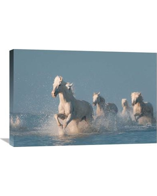 "Global Gallery 'Angels Of Camargue' by Rostov.Foto Photographic Print on Wrapped Canvas GCS-462665--142 Size: 20.1"" H x 30"" W x 1.5"" D"