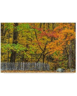 """Trademark Art 'Fall Fence Scene' Photographic Print on Wrapped Canvas ALI34952-CGG Size: 16"""" H x 24"""" W x 2"""" D"""