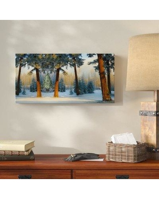 """Millwood Pines 'Nature Collection 12' Graphic Art Print on Wrapped Canvas MLWP4971 Size: 16"""" H x 32"""" W x 2"""" D"""