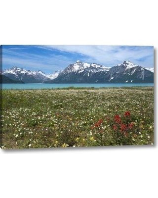 "Millwood Pines 'AK Glacier Bay NP Strawberry and Red Paintbrush' Photographic Print on Wrapped Canvas BF152222 Size: 11"" H x 16"" W x 1.5"" D"