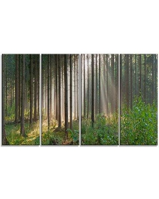 Design Art 'Green Forest in Mist Panorama' Photographic Print Multi-Piece Image on Canvas PT15446-271