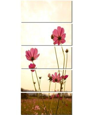 Design Art 'Blooming Cosmos Flower Field' 5 Piece Photographic Print on Wrapped Canvas Set PT13019-401V