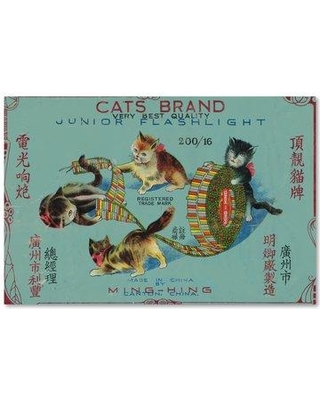 """Trademark Art 'Cats Fireworks' Print on Wrapped Canvas ALI18160-C Size: 16"""" H x 24"""" W"""