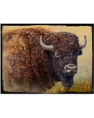 """Millwood Pines 'Bison Portrait I' Graphic Art Print on Wrapped Canvas MIPN1661 Size: 18"""" H x 24"""" W x 2"""" D"""