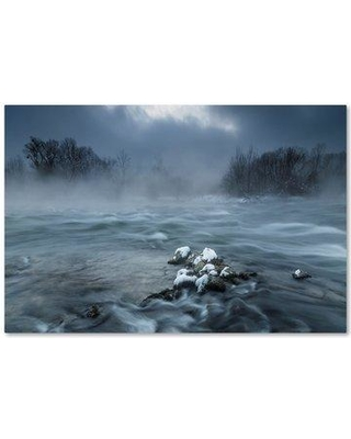 """Trademark Art 'Frosty Morning At the River' Photographic Print on Wrapped Canvas 1X03754-C Size: 16"""" H x 24"""" W"""