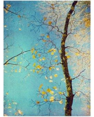 """Winston Porter 'Autumn Tapestry III' Graphic Art Print on Wrapped Canvas W000623108 Size: 32"""" H x 24"""" W x 2"""" D"""