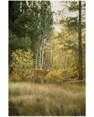 """Trademark Art 'Autumn Aspen White Tailed Deer' Graphic Art Print on Wrapped Canvas ALI32598-CGG Size: 47"""" H x 30"""" W x 2"""" D"""