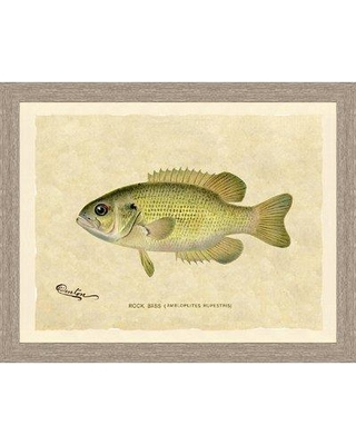 Loon Peak 'Bass Trout' Framed Graphic Art Print LNPE1128