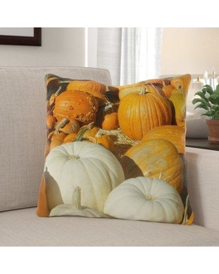 The Holiday Aisle Winton Pumpkins Indoor/Outdoor Throw Pillow W001144047