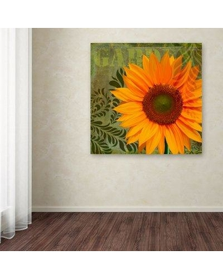 """August Grove 'Summer Sun II' Graphic Art Print on Wrapped Canvas AGGR8637 Size: 18"""" H x 18"""" W"""
