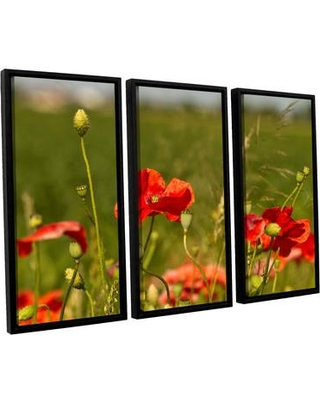 ArtWall '3114A' by Lindsey Janich 3 Piece Framed Photographic Print on Canvas Set 0jan029c3654f