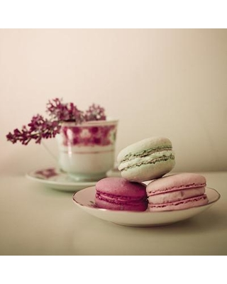 """Ophelia & Co. 'Pretty Macaroons' Photographic Print on Wrapped Canvas OPCO2880 Size: 18"""" H x 18"""" W x 0.75"""" D"""