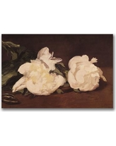 """Trademark Art """"Branch of White Peonies"""" by Edouard Manet Painting Print on Wrapped Canvas BL0405-C Size: 35"""" H x 47"""" W x 2"""" D"""