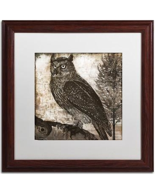 """Trademark Fine Art 'Owl 2' by Color Bakery Framed Graphic Art ALI4215-W1 Mat Color: White Size: 16"""" H x 16"""" W x 0.5"""" D"""