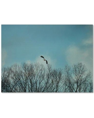 """Trademark Art 'Over the Treeline' Photographic Print on Wrapped Canvas ALI14722-C Size: 18"""" H x 24"""" W"""