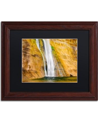 "Trademark Art 'Ribbons' by Michael Blanchette Framed Photographic Print ALI3952-W1 Size: 11"" H x 14"" W x 0.5"" D Matte Color: Black"