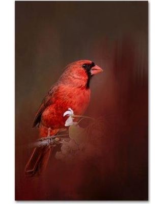 """Trademark Fine Art 'Cardinal in Antique Red' Graphic Art Print on Wrapped Canvas ALI14384-C Size: 47"""" H x 30"""" W"""