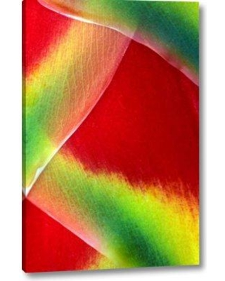 """Ebern Designs 'Hawaii Maui Lobster Claw or Heliconia Rostrata' Graphic Art Print on Wrapped Canvas BF155949 Size: 16"""" H x 10"""" W x 1.5"""" D"""