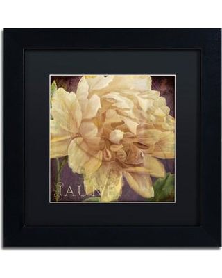 """Trademark Art 'Jaune' by Color Bakery Framed Graphic Art ALI4035-B1 Size: 11"""" H x 11"""" W x 0.5"""" D Mat Color: Black"""