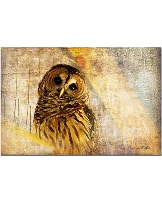 """Trademark Fine Art """"Owl"""" by Lois Bryan Painting Print on Wrapped Canvas LBr005-C Size: 16"""" H x 24"""" W x 2"""" D"""