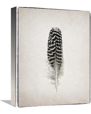 "East Urban Home 'Feather I - BW' Photographic Print on Canvas ESUN0801 Size: 32"" H x 24"" W"