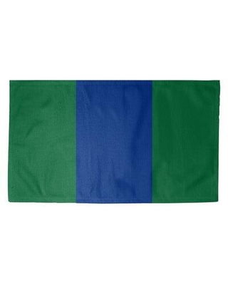 East Urban Home Seattle Throwback Football Green Area Rug FCJK9561 Rug Size: Rectangle 4' x 6' Backing: No