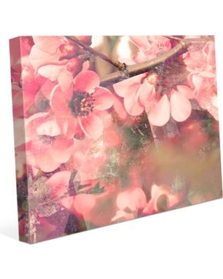 """Click Wall Art Sakura Flowers Photographic Print on Wrapped Canvas FLR0000005CAN Size: 24"""" H x 36"""" W x 1.5"""" D"""