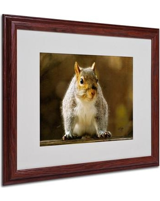 "Trademark Art ""Smiling Squirrel"" by Lois Bryan Matted Framed Photographic Print LBr0224 Size: 16"" H x 20"" W x 0.5"" D Frame: Brown - Beveled"