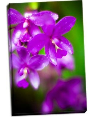 Bay Isle Home 'Purple Orchid II' Photographic Print on Wrapped Canvas BF051124
