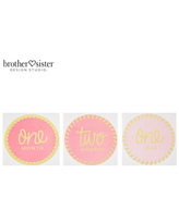 Pink Baby Girl Monthly Milestone Stickers