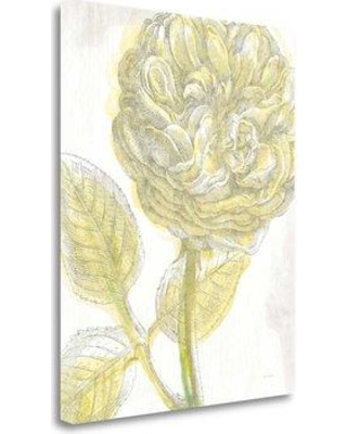 New Deal On Tangletown Fine Art Belle Fleur Yellow Iii Crop Wrapped Canvas Print On Canvas Canvas Fabric In Brown Yellow Gray Size 32 H X 26 W Wayfair