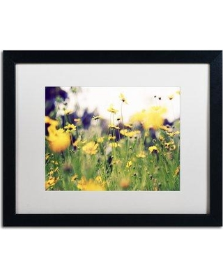 """Trademark Fine Art 'Days in the Sun' by Beata Czyzowska Young Framed Photographic Print on Canvas BC0171-B1620MF / BC0171-B1114MF Size: 16"""" H x 20"""" W x 0.5"""" D"""