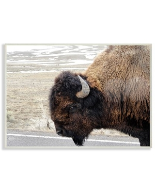 The Stupell Home Decor Collection Beautiful Buffalo Photography Oversized Wall Plaque Art
