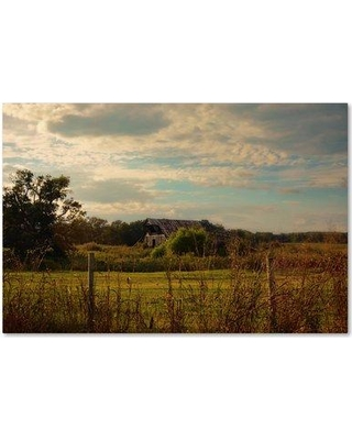 """Trademark Fine Art 'Rusty Barn at Sunset' Photographic Print on Wrapped Canvas ALI14104-C Size: 30"""" H x 47"""" W"""