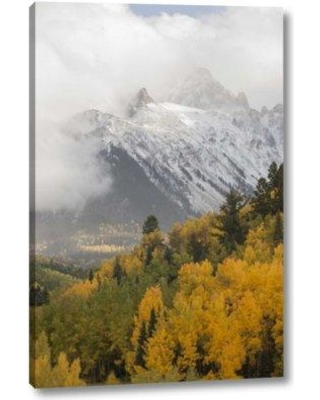 """Millwood Pines 'Colorado Sneffels Range Mt Sneffels at Sunset' Photographic Print on Wrapped Canvas BF152339 Size: 24"""" H x 16"""" W x 1.5"""" D"""