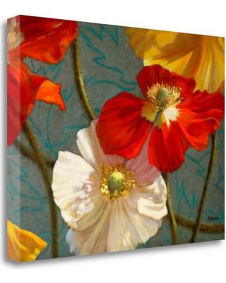 """Tangletown Fine Art 'Poppycock' Graphic Art Print on Wrapped Canvas ICM1132D-2418c Size: 24"""" H x 32"""" W"""