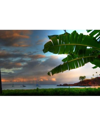 """HadleyHouseCo Black Rock Kaanapali Maui by Kelly Wade Photographic Print on Wrapped Canvas 3710001 Size: 30"""" H x 40"""" W"""