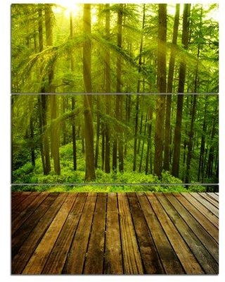 Design Art 'Golden Sunlight in Pine Forest' Photographic Print Multi-Piece Image on Canvas PT9455-3PV