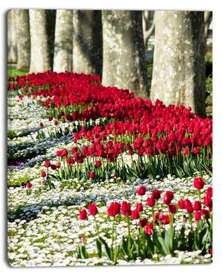 "Design Art 'Wild Tulip Flowers in Forest Pasture' Photographic Print on Wrapped Canvas PT12618 Size: 40"" H x 30"" W x 1"" D"