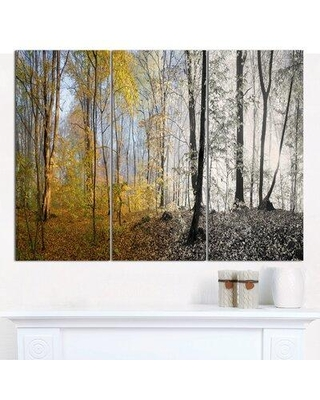 Design Art 'Yellow Morning in Forest Panorama' Photographic Print Multi-Piece Image on Canvas PT15465-3P
